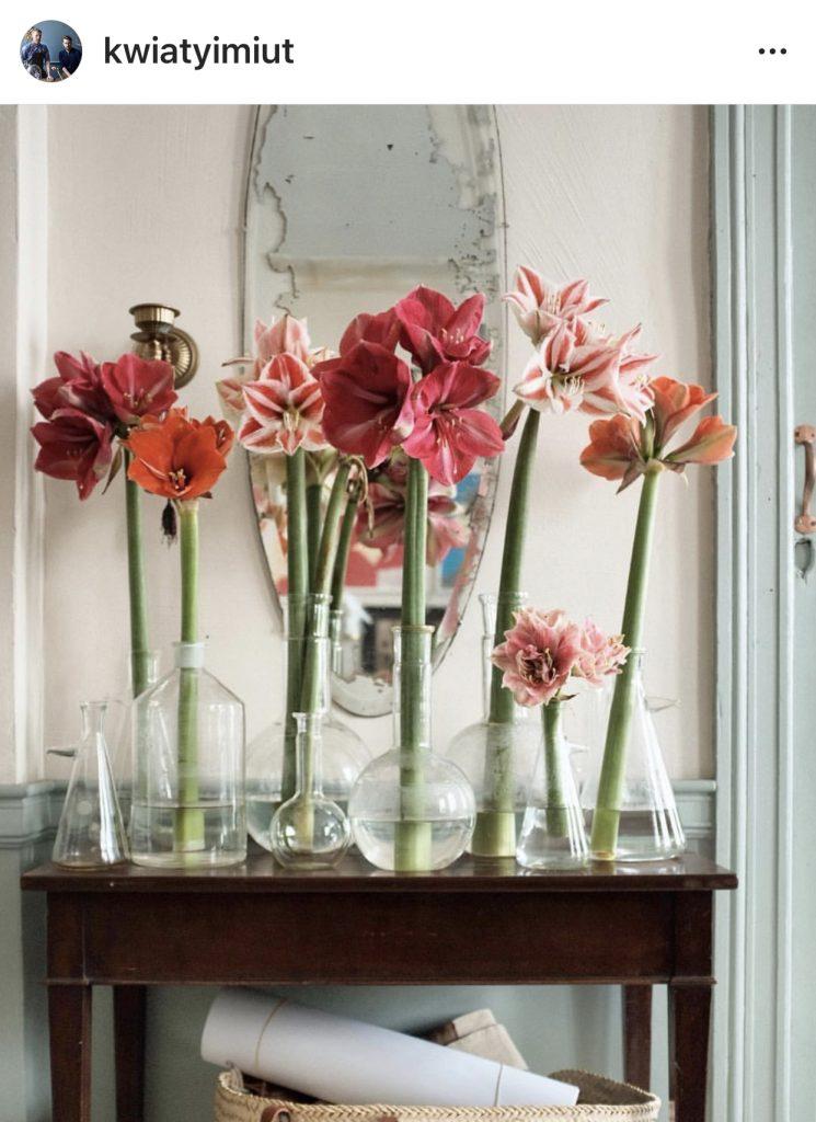 Kwiaty i Miut flowers Instagram
