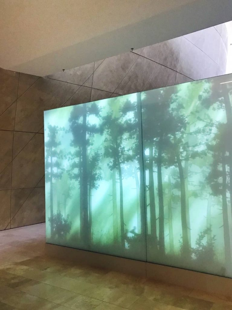 A forest installation inside Polin Museum of Jewish History